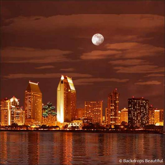 Backdrops: San Diego by Night 2