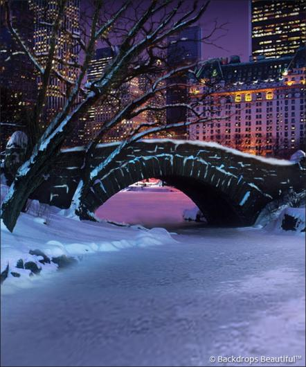 Backdrops: Central Park 5 Winter