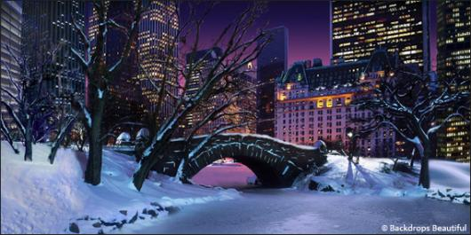 Backdrops: Central Park 2A Winter