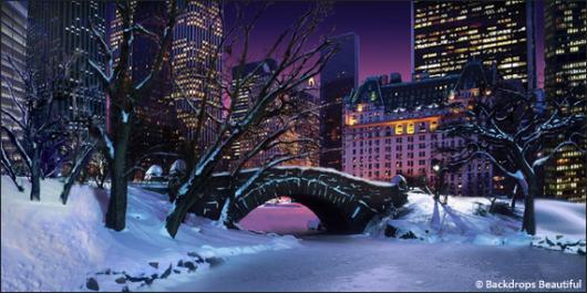 Backdrops: Central Park 2B Winter