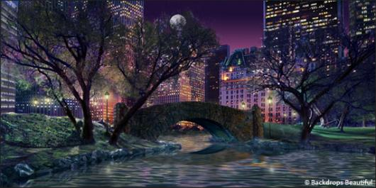 Backdrops: Central Park 4 Night