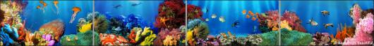Backdrops: Coral Reef 4 Panel