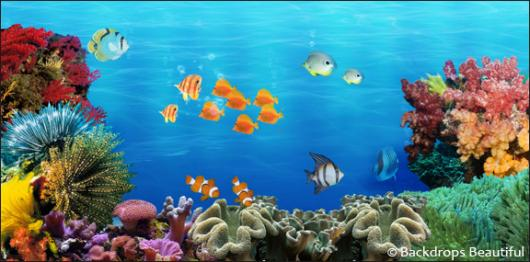 Backdrops: Coral Reef 6