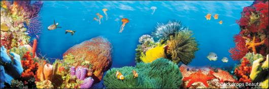 Backdrops: Coral Reef 8A