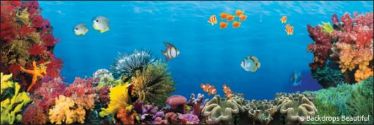 Backdrops: Coral Reef 8B