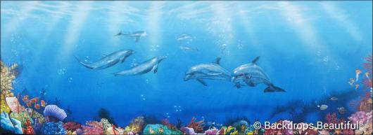 Backdrops: Coral Reef 9 Dolphins