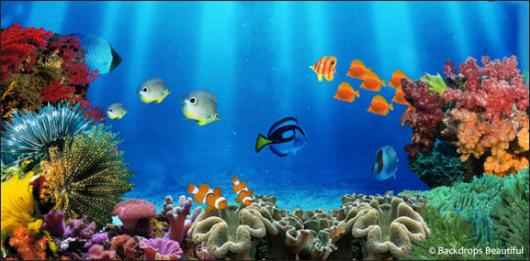 Backdrops: Coral Reef 3