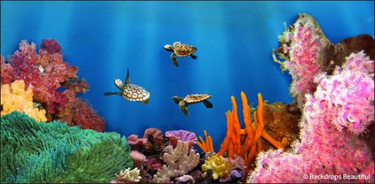 Backdrops: Coral Reef 4