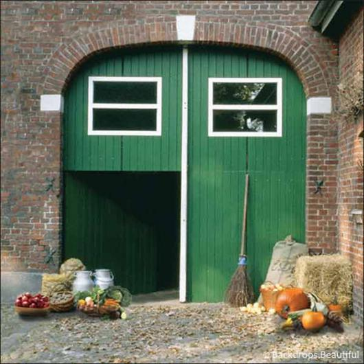 Backdrops: Barn 1 Green Door