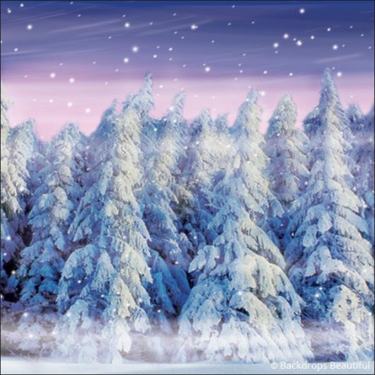 Backdrops Winter Forest 4