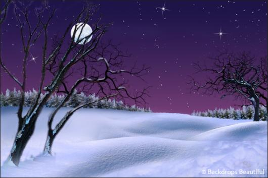 Backdrops: Winter Twilight 1A Moon