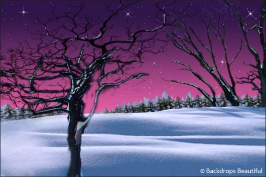 Backdrops: Winter Twilight 1C Stars