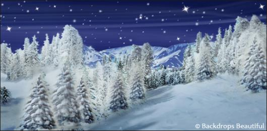 Backdrops: Winter Wonderland 3D