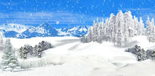 Winter Wonderland 4C