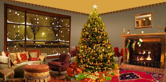 Christmas Holiday Backdrops