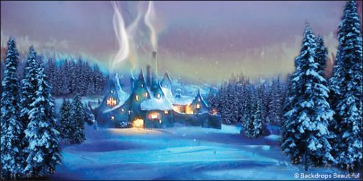 Winter Village Backdrop 1 | Backdrops Beautiful