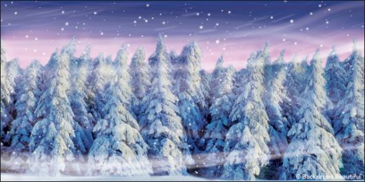 Backdrops: Winter Forest 1B