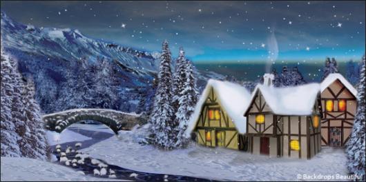 Backdrops: Winter Village 2A