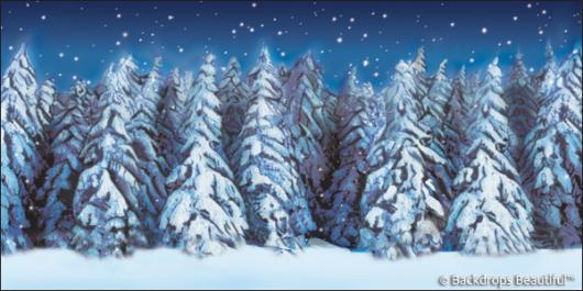 Backdrops: Winter Forest 5