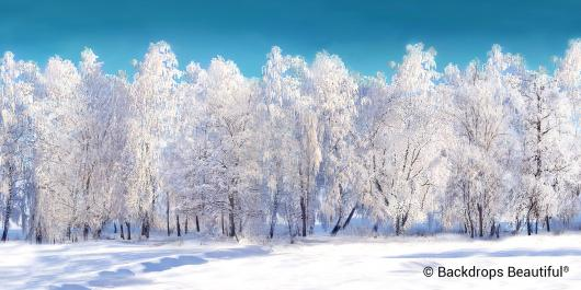 Backdrops: Winter Forest White