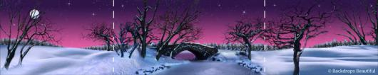Backdrops: Winter Twilight 1 Panel